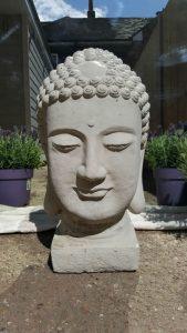 Post Natal Yoga and Pregnancy Yoga at The Yoga Shed Wickham, Fareham
